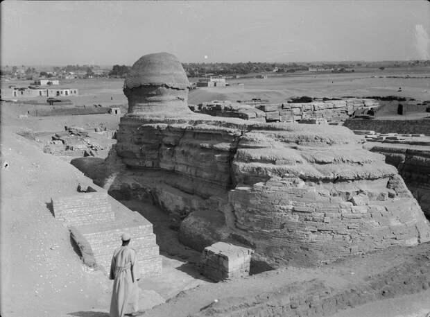 Раскопки Альфреда Моуда. Гиза. Сфинкс и пирамиды. Сфинкс (вид сзади). 1934