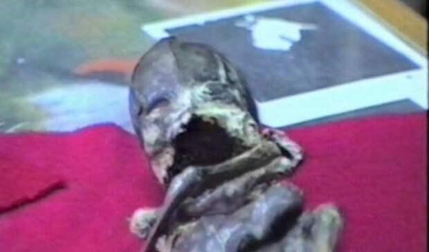 Кыштымский карлик: что нашли в российской глубинке
