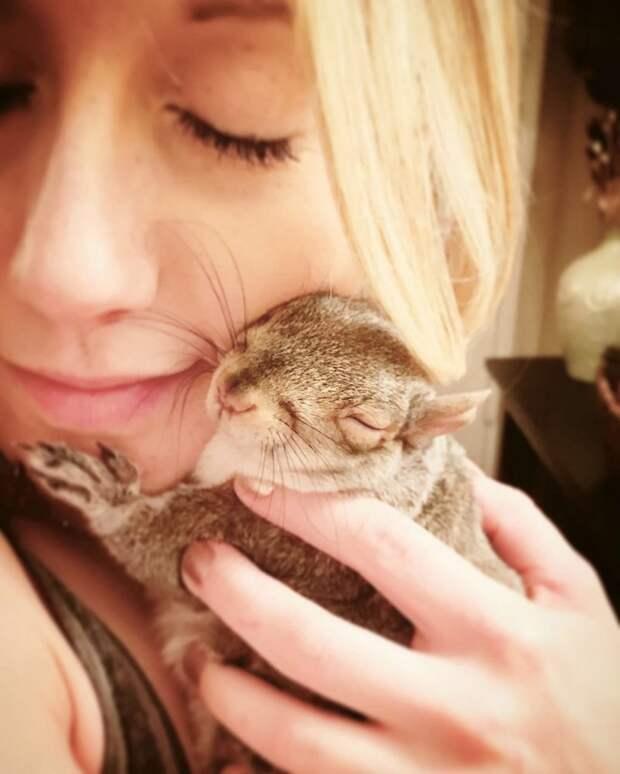 Дюймовочка любит спать вместе со своими хозяевами белка, добро, животные, люди, находка, помощь, поступок