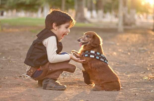 10. Настоящий друг дети, домашние животные, собака, собаки