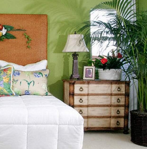 Спальня без окон дизайн, растения