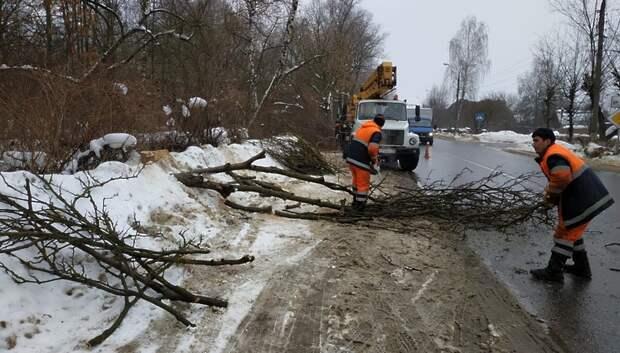 Ветки деревьев обрезали вдоль улицы Победы в Климовске