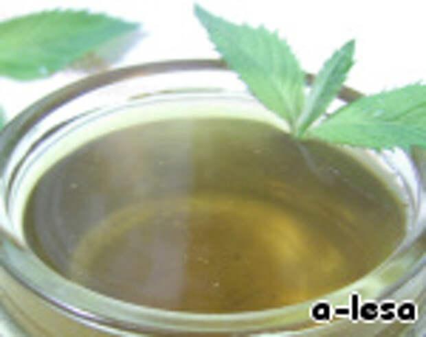 """Мятный сироп """"Mint syrup"""" ингредиенты"""