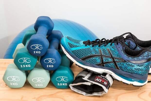Тренируем сердце — главную мышцу нашего тела