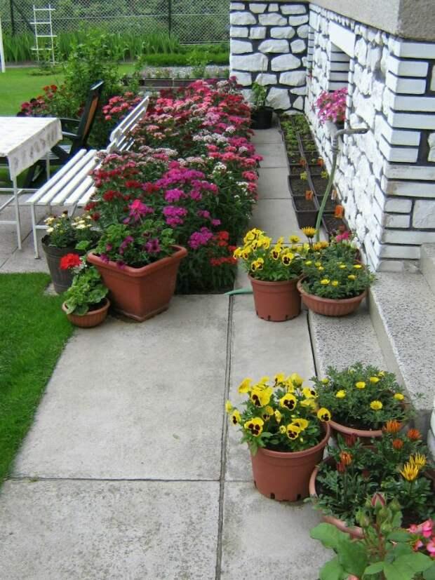 Идеи оформления участка цветниками