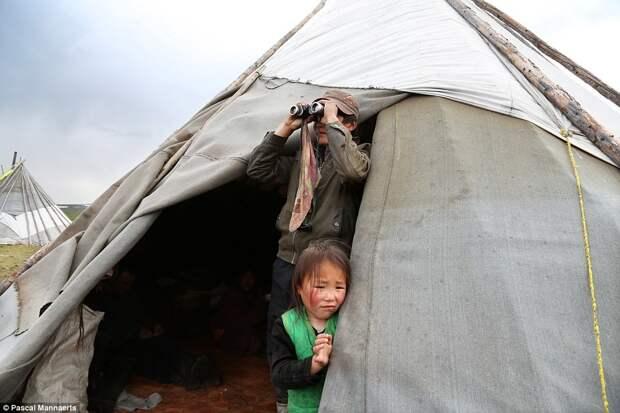 Монгольские оленеводы цаатаны