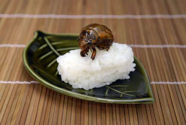 экзотическое суши 8