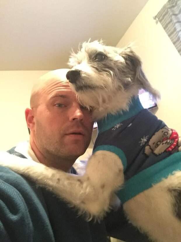 список желаний умирающей собаки, список желаний смертельно больной собаки, список желаний собаки больной раком