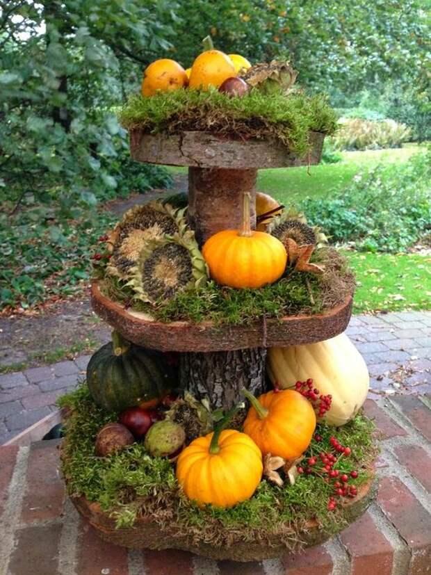 Очаровательные идеи для поделок из даров осени