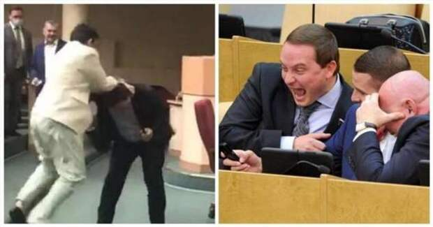 Депутаты в Ульяновске подрались из-за голубков (3 фото + 1 видео)