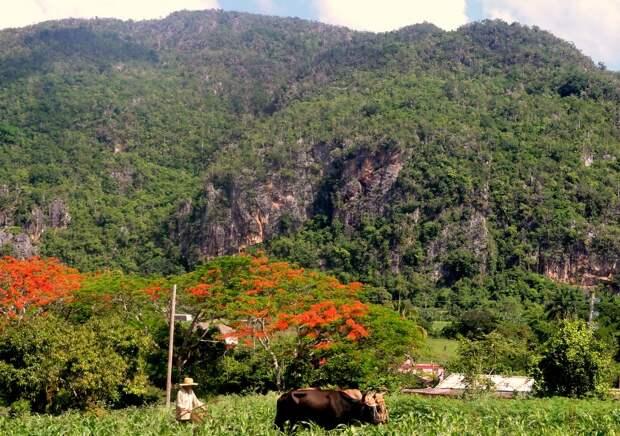 Долина Виньялес: приятное путешествие во времени