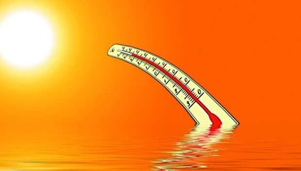До плюс 30 градусов ожидается в Мытищах в среду