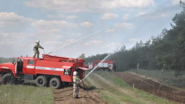 С 9 апреля в лесах Ростовской области начнется пожароопасный сезон