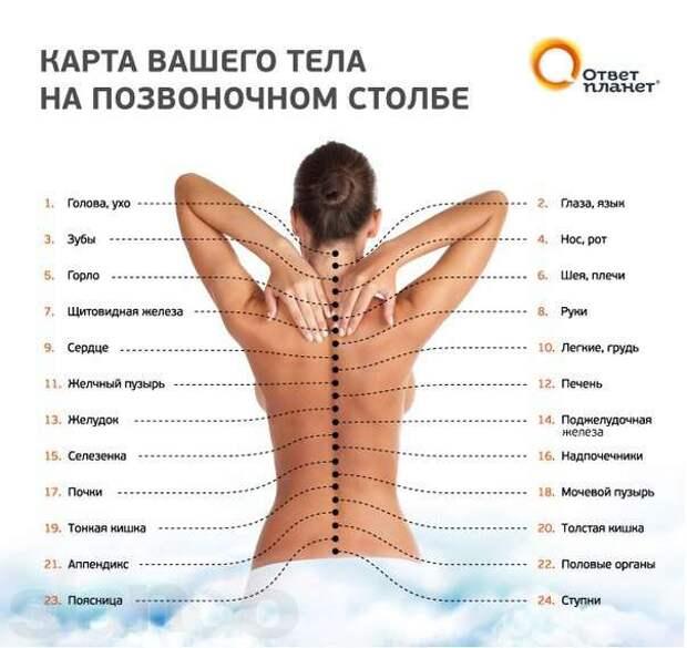 65487359_1_1000x700_kitayskiy-lechebnyy-massazh-na-vyezd-po-almaty-almaty_rev003