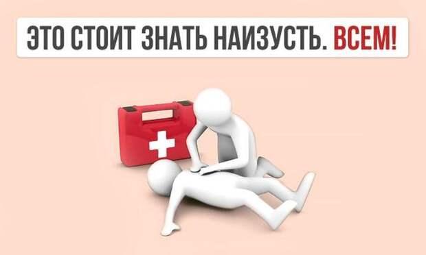 Гид по оказанию первой помощи первая помощь, полезно