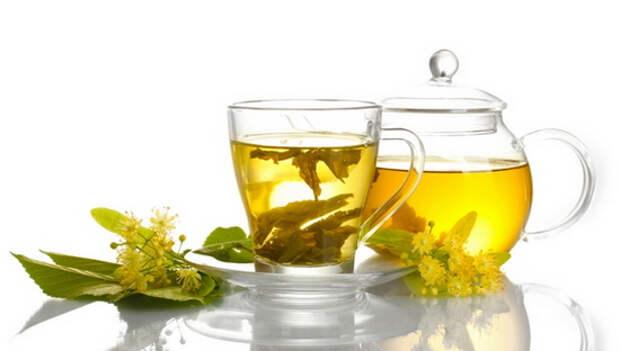 Липовый чай: полезные свойства и противопоказания. Как сушить липу для чая, как заваривать и пить чай из липы