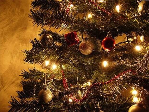 Когда нужно убирать новогоднюю елку, чтобы благополучие не покинуло дом?