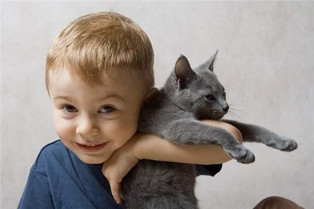 http://kinderinfo.ru/wp-content/uploads/boy-and-cat.jpg