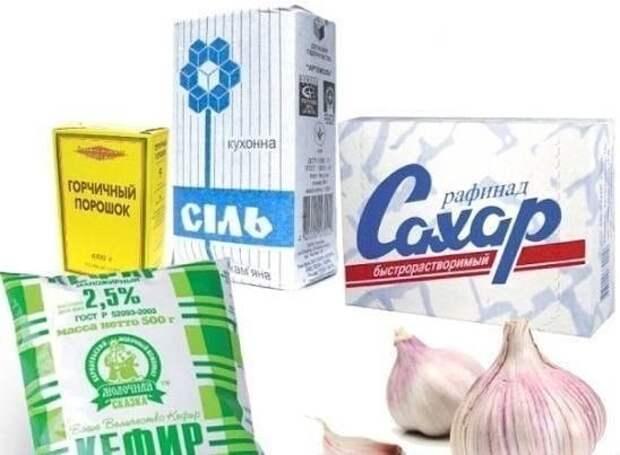 Соль, сахар, чеснок, кефир - заменят химию в огороде!