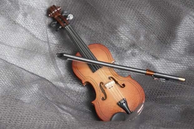 В Северном Тушине пройдет концерт скрипичной музыки