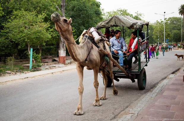 Индийский транспорт