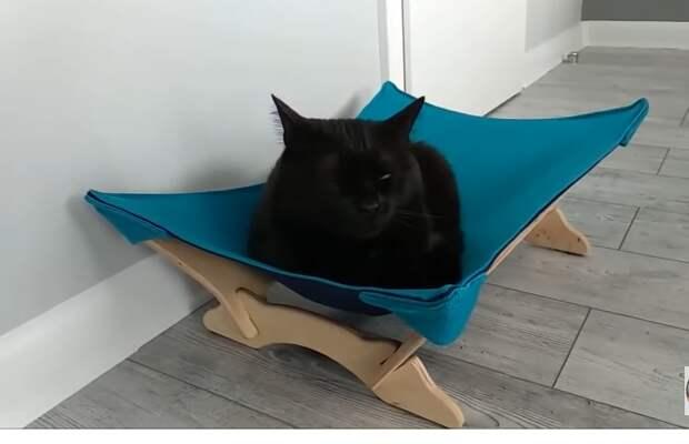Кошачья подвесная кровать