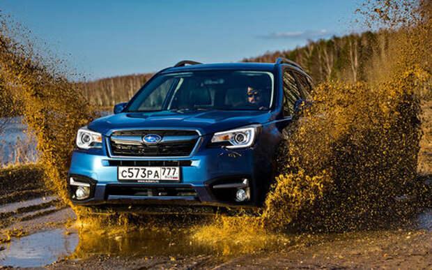 Subaru Forester с пробегом: оптимальный выбор эксперта