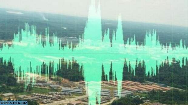 Трубные звуки в Венгрии, 500 км от Зоны Вранча