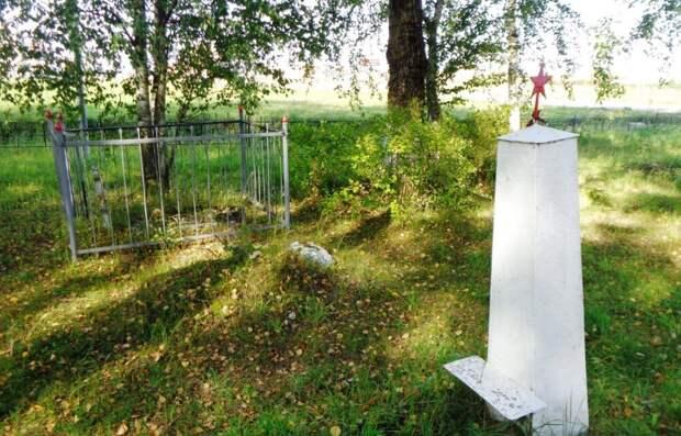 Названа площадь бесплатной земли, положенной жителям Ленобласти после смерти