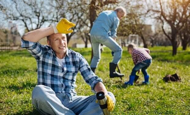 Чего не нужно делать в саду весной – 10 главных ошибок начинающих садоводов