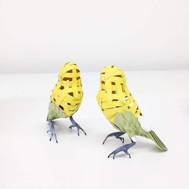 Бумажные птицы Дианы Бельтран