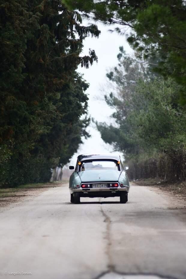 Citroen DS — самая крутая тачка за всю историю автомобилестроения Citroen DS, citroen, авто, автомир, автомобили, автомобиль, олдтаймер, ретро авто