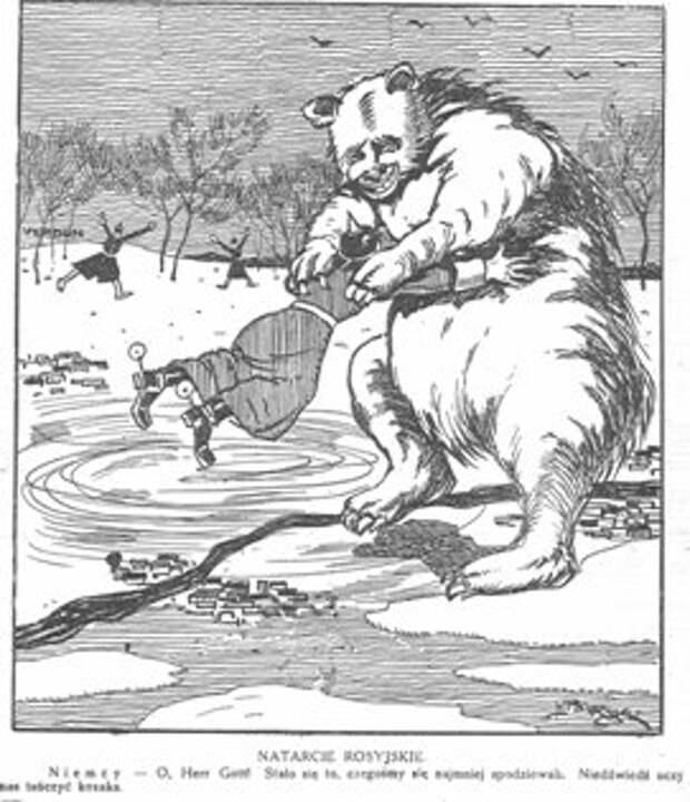 1916 Польша медведь, россия