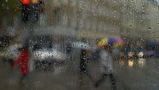 Кратковременные дожди с грозами ожидаются в Московском регионе на выходных