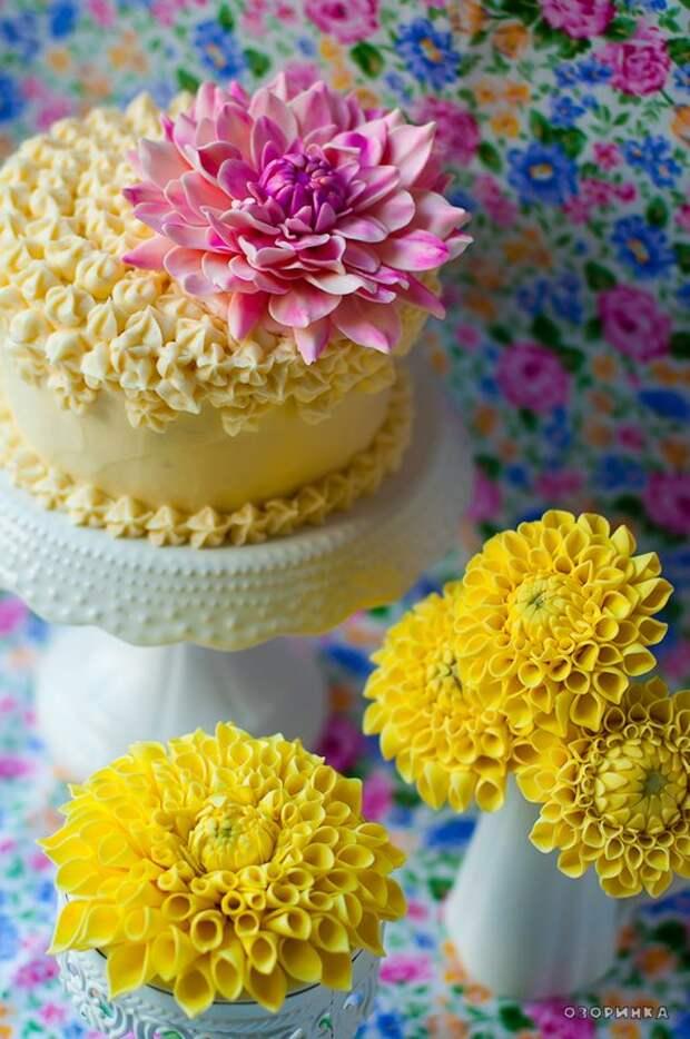 цветы из сахарной мастики для украшения торта