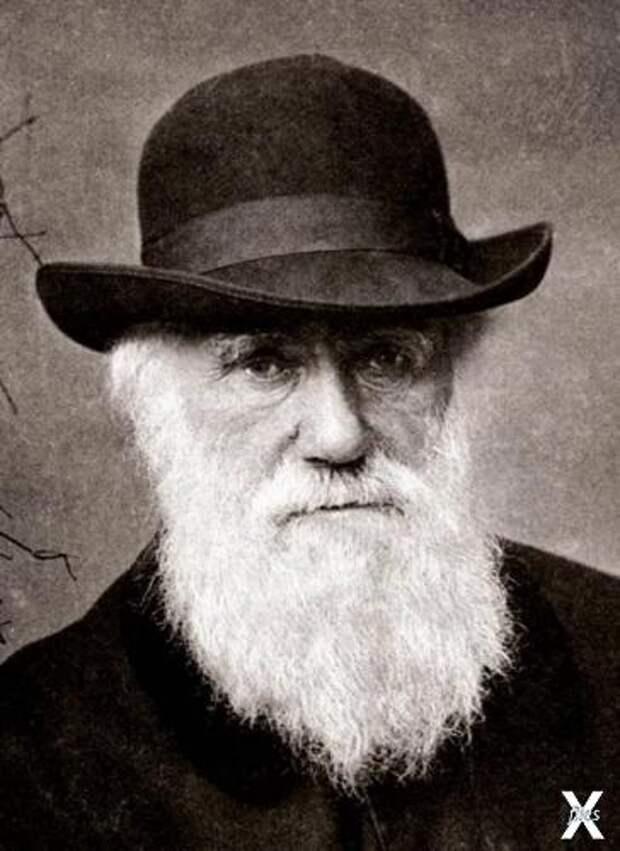 Английский натуралист Чарльз Дарвин