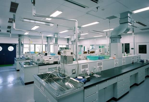 Правительство направило 6 миллиардов рублей на оснащение лабораторий в регионах