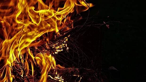 Школьники из Мордовии помогли отстоять свой город от огня