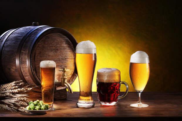 Пиво помогает бороться с раком еда, здоровье, пиво, прикол, факты