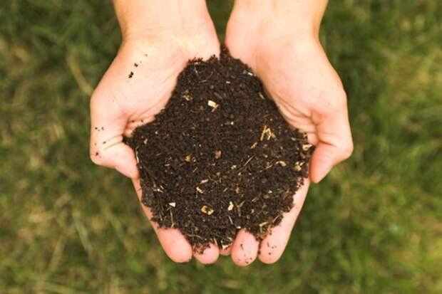 Углеродное сельское хозяйство - новый путь сохранения климата