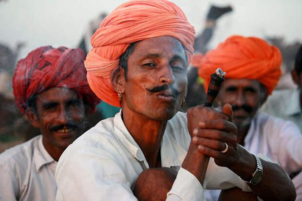 Раджастханская элегантность, Индия вокруг света, путешествия, фотография