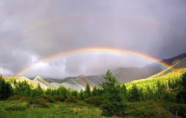 Если Вы хотите увидеть радугу, Вам нужно пережить дождь.