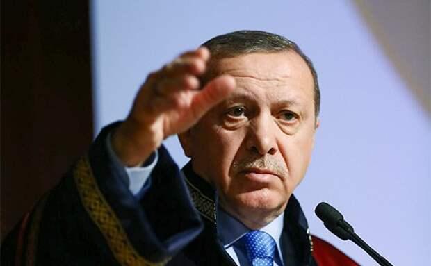 Равнение на Гитлера. Эрдоган привел в пример гитлеровскую Германию в споре о власти президента