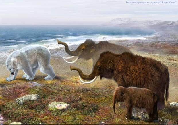 Загадки мамонтов Арктиды