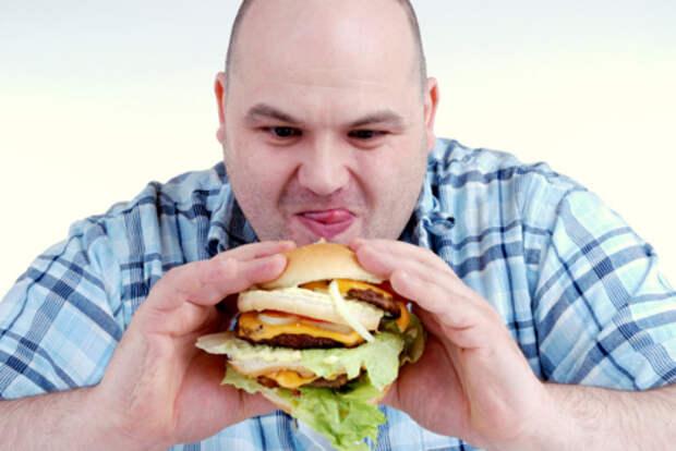 Нездоровая пища вызывает привыкание сродни наркотическому