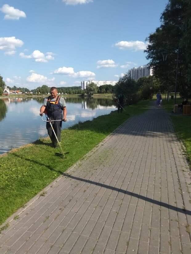 Около пруда у Алтуфьевской усадьбы подстригли газон