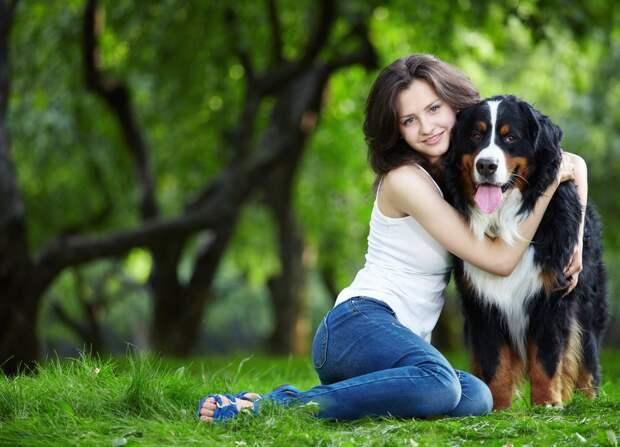 С собакой жить, не поле перейти