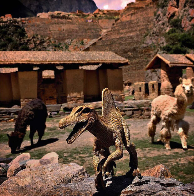 travel-photography-dinosaur-toys-dinodinaseries-jorge-sa_017