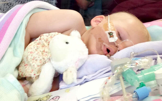 Bella's Moore-Williams immediately before the life support machine was switched off.