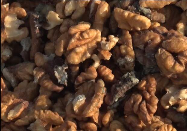 Афлатоксины в орехах. Плесень в орехах, зерновых и сухофруктах – очень опасна